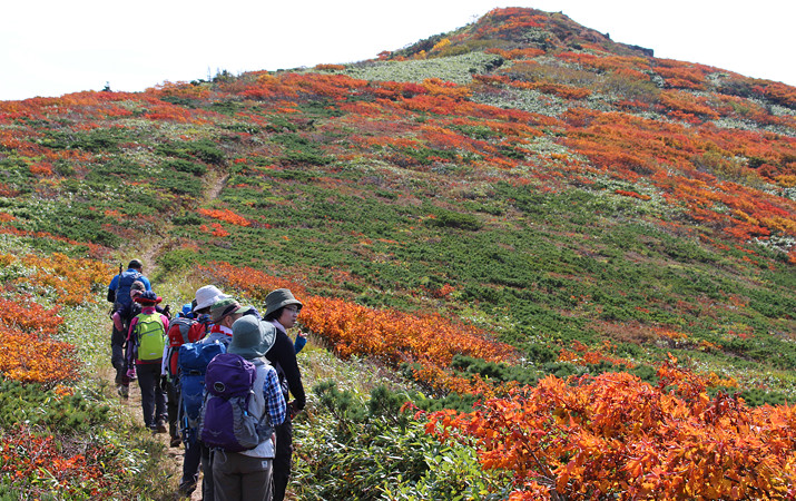 Scheduled Trekking Programs for Enjoying the Highlights of the Season